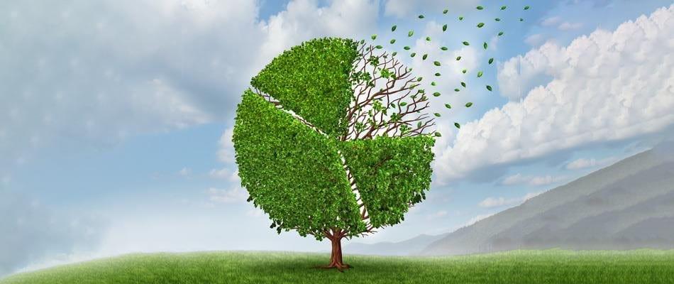 Previdenza professionale: nel risparmio si cela molto più potenziale