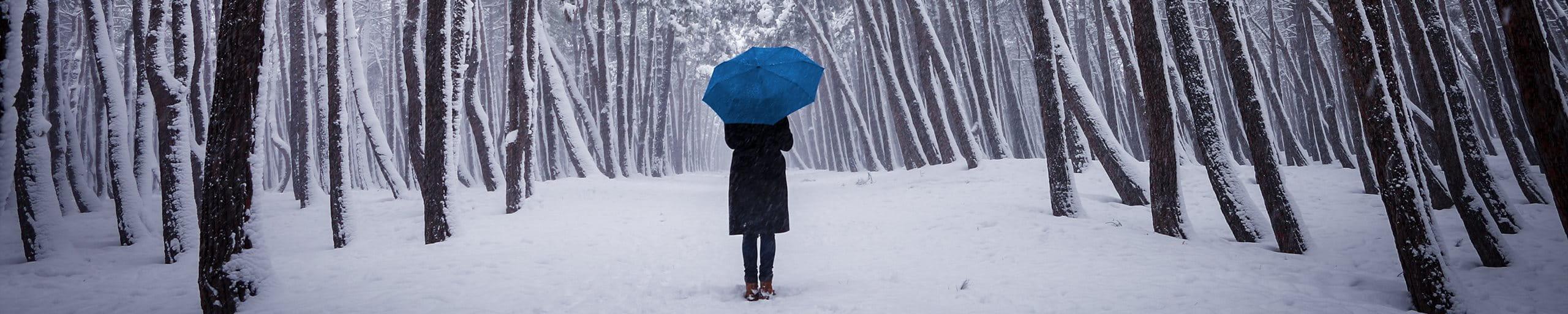Frau im verschneiten Wald, mit Regenschirm.