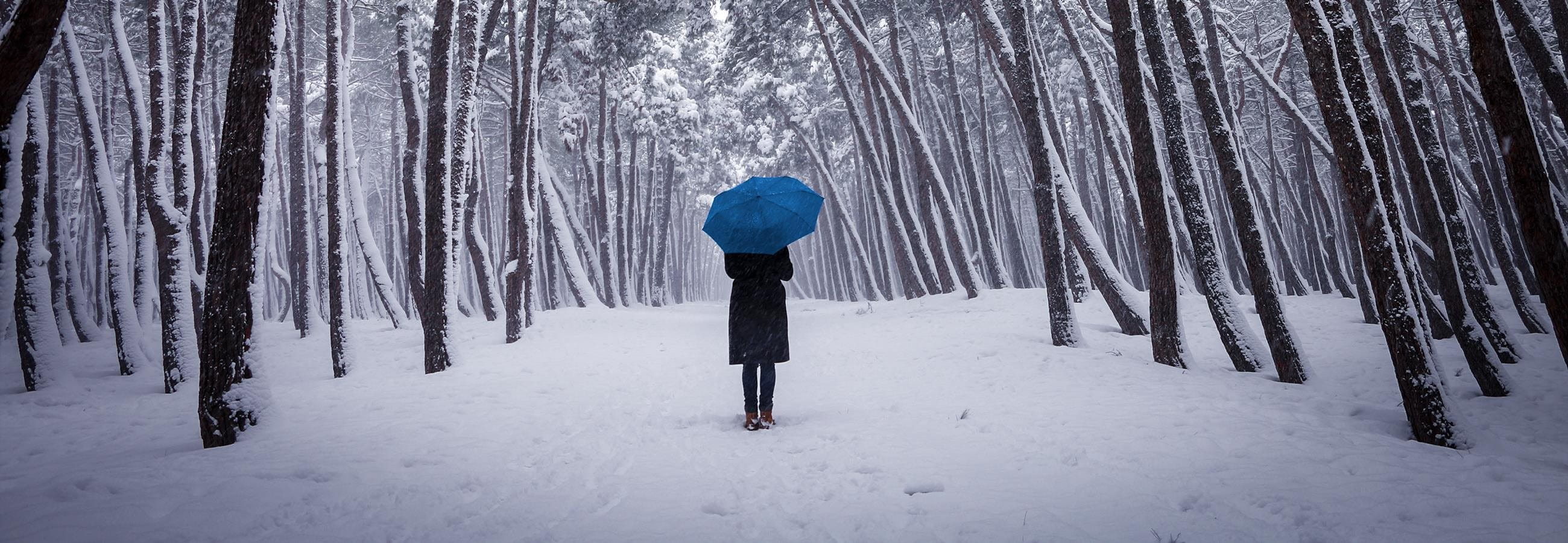 Woman walking in a snowy forest, carrying an umbrella.