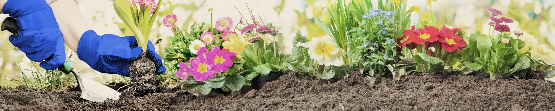il giardinaggio con fiori