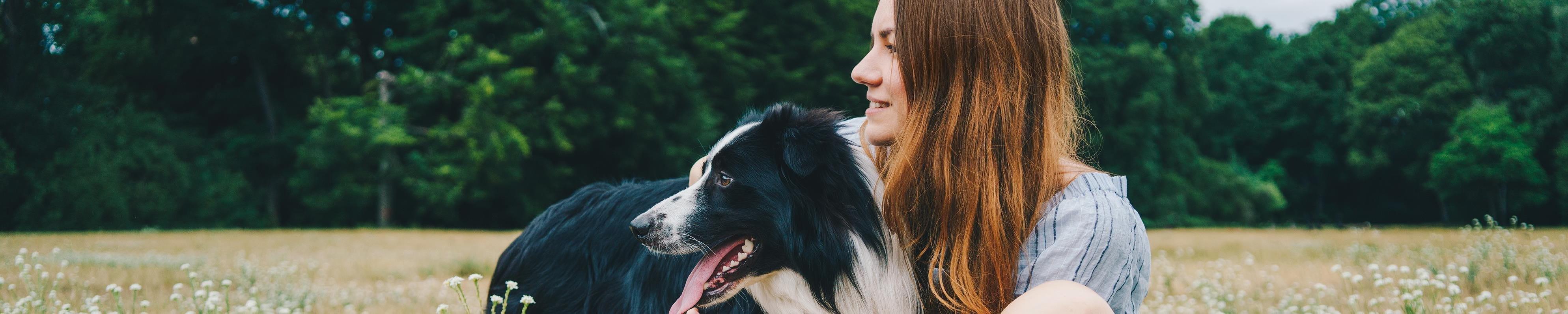 Jeune femme jouant avec un chien Border Collie dans un parc