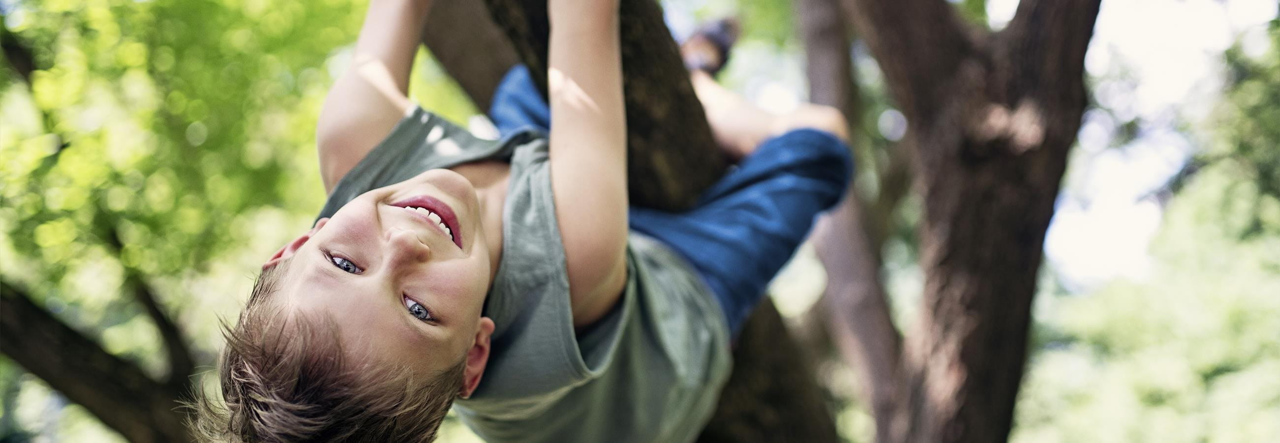 Child climbs in the tree