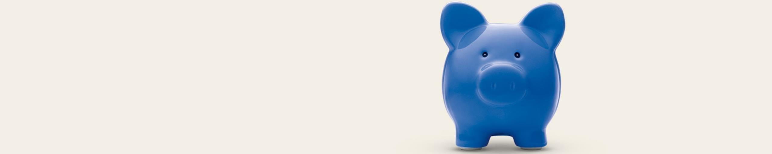 Bleu porc